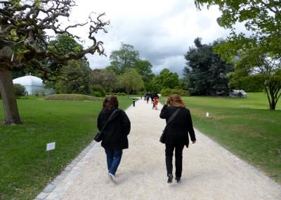 Sortie aux jardins botaniques (2)